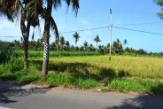 land for sale in Gianyar nice river view – TJGN002