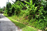 Land for sale in Ubud 16 ares in the villa area