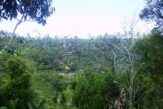 prime cliff top land for sale in Ubud – TJUB072