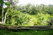 land for sale in Ubud Bali with stunning natural waterfall view – TJUB081