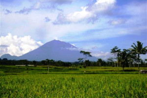 Land for sale in Ubud Bali Stunning view to ricefields, mountain and river valley – TJUB082