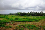 Land for sale in Tegalalang Ubud, Stunning natural view with 2 waterfalls on site – TJUB084