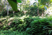 Land for sale in Ubud rice field view suitable for villa – TJUB089