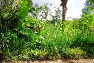 roadside ubud land for sale in Ubud Payangan – TJUB100