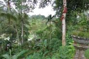 land for sale in Ubud nice for villa at center Ubud – TJUB104