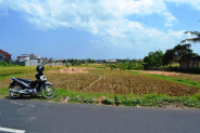 Roadside land for sale in Canggu with rice field view – TJCG053