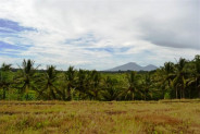 Land for Sale in Bedugul, Bali with Beautiful Lake View – TJBE002