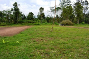 LAND FOR SALE IN TABANAN NEAR BEDUGUL – TJBE007