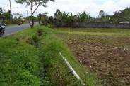 land for sale in Bedugul near baturiti traditional market – TJBE010