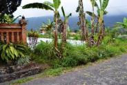 mountain view land for sale in Bedugul – TJBE019