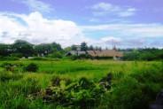 Land for sale in canggu pererenan – TJCG027