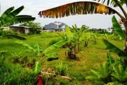 Land for sale in canggu near sentosa hotel – TJCG032