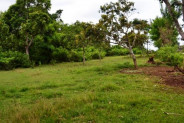 land for sale near aisis villa jimbaran – TJJI016