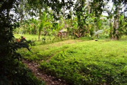 Land for sale in Ubud with rice field and river view – TJUB055