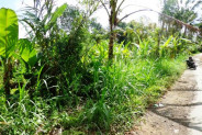 Land for sale in Ubud suitable for villa – TJUB100