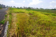 Roadside Land for sale in Canggu with beautiful rice fields view – TJCG054