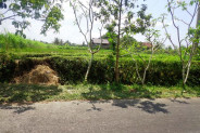 SOLD !!!! Land for sale in Ubud Pejeng Bali with rice fields view – TJUB121