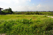 Stunning rice fiels view land for sale in Canggu – TJCG071