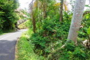 Land for sale good view in Tegalalang Ubud