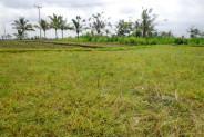 Land for sale in Ubud 2100 m2 in Ubud Pejeng – TJUB144