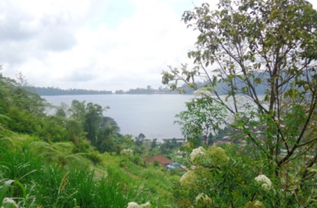 Land for sale in Bedugul Perfect for villa – TJBE023