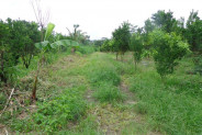 Ubud Land for sale in Bali magnificent view in Tegalalang – LUB156