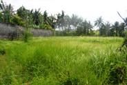 Land for sale in Canggu close to Canggu club – LCG085