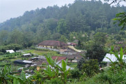 Land for sale in Bedugul Bali 5,130 sqm in Bedugul Tabanan