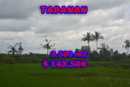 Tabanan Land for sale 35 Ares with montain and rice paddy view – TJTB041