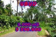 Land for sale in Ubud Bali 4.900 sqm Stunning view – TJUB221