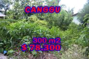 Land for sale in Canggu Bali 300 sqm Stunning view – TJCG100E