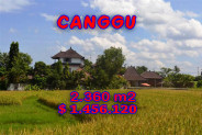 Land for sale in Bali 2,360 sqm close to the beach  in Canggu  – TJCG102