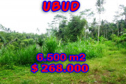 Land for sale in Bali, astonishing view in Ubud Tegalalang Bali – TJUB241
