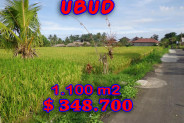 Land for sale in Ubud Bali 1.100 m2 in Ubud Center