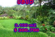 Land for sale in Ubud Bali 3,100 m2 in Ubud Tegalalang – TJUB194E