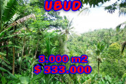 Land for sale in Ubud Bali 3.000 sqm in Ubud tegalalang – TJUB205