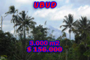Land in Ubud for sale 3.000 sqm Stunning view
