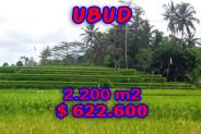 Land for sale in Ubud 2.200 m2 Close to Ubud Center – TJUB206