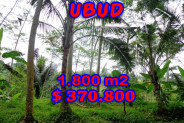 Land for sale in Ubud 1.800 m2 Stunning By the river side – TJUB207