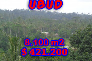 Land in Ubud for sale 8,100 m2 Stunning natural view – TJUB187E