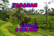 Land for sale in Bali 30 Ares in Tabanan – TJTB038