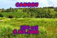 Bali Land for sale 200 sqm in Canggu Berawa – TJCG099