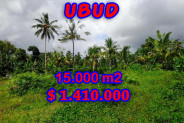 Land in Bali for sale 150 Ares in Ubud Tegalalang – TJUB209