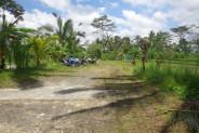 Land for sale in Ubud close to Ubud monkey forest  in Ubud Payangan Bali