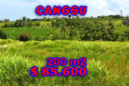 Land for sale in Bali, Spectacular view in Canggu Bali – 200 m2 @ $ 428