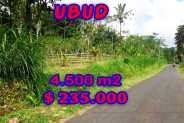 Land for sale in Bali, Spectacular view in Ubud Bali – 4.500 m2 @ $ 52