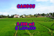 Land in Bali for sale, Stunning Property in Canggu Bali – 2.200 m2 @ $ 483