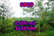 Land in Bali for sale, fantastic view in Ubud Bali – TJUB248
