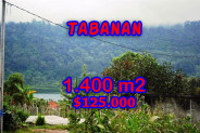 Astonishing Property in Bali, Land for sale in Tabanan Bali – 1.400 m2 @ $ 89