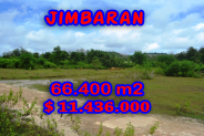 Astounding Property in Bali, Land in Jimbaran Bali for sale – 66.400 m2 @ $ 172